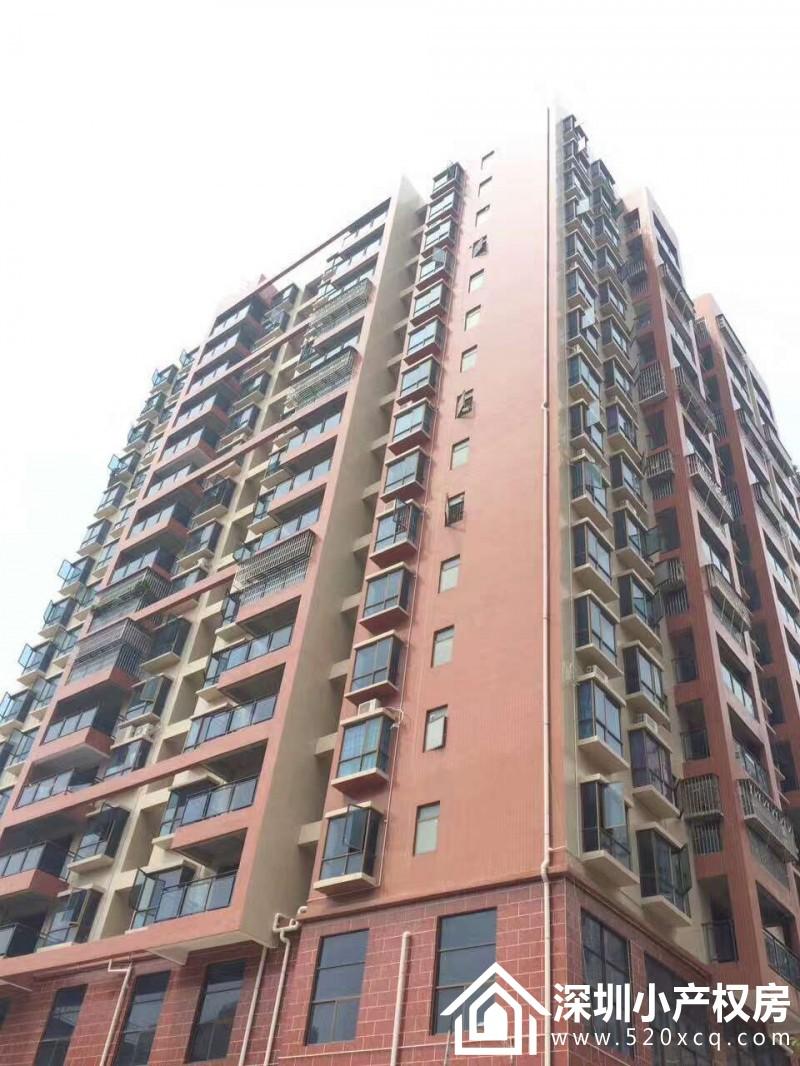 公明村委统建楼《上城大厦》村委签一手合同  最便宜的统建楼