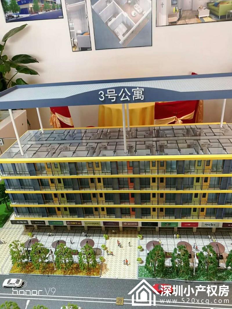 龙岗大红本精装公寓<运城公寓>小产权手续,商品房的享受 地铁电梯精装物业