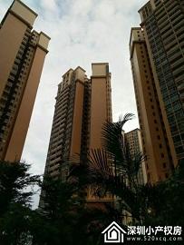 宝安沙井村委统建楼《山水豪庭》地铁口200米 9栋花园小区