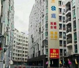 观澜红本精装公寓<启点公寓>精装 现楼 学区房,优先公立学校