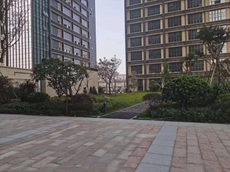 宝安福永村委房《凤凰岭域》5栋花园小区村委签合同 唯一可以分期十年 可落深圳户口